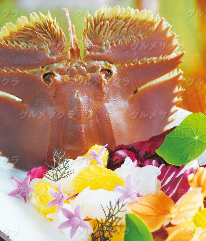 五島列島直送うちわ海老のカルパッチョ